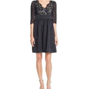 Eliza J Black Lace Flat Front Fit & Flare Dress